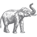 onekingslane_logo.png